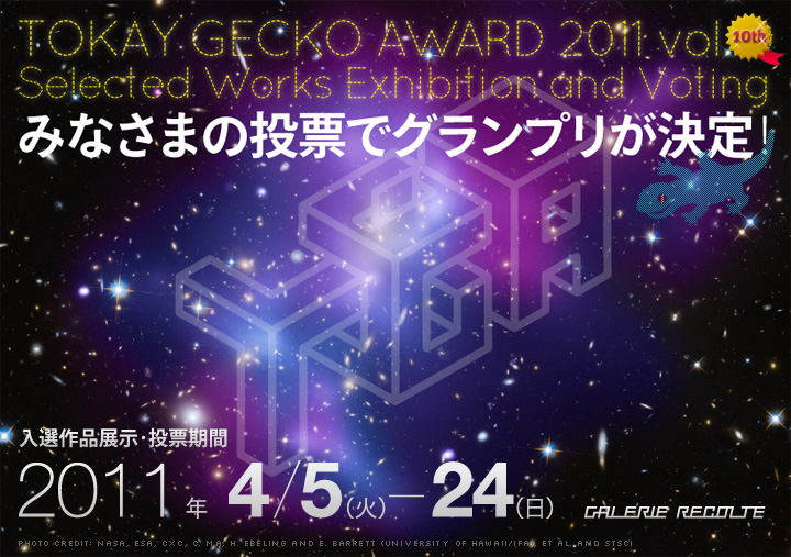 TOKAY GECKO AWARD 2011 入選作品展示・投票期間